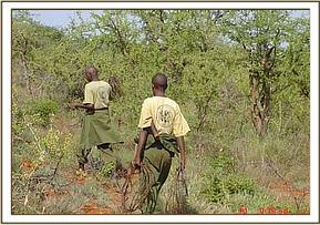 Desnaring team members with lifted snares