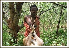 Arrested poacher with the dead Duiker