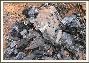 Some charcoal found at Gazi