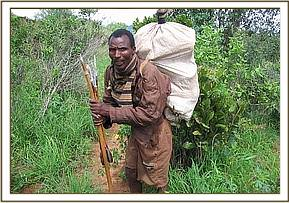 Arrested poacher with bow and arrows