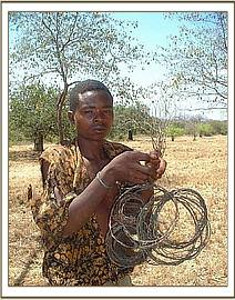 Poacher with snares