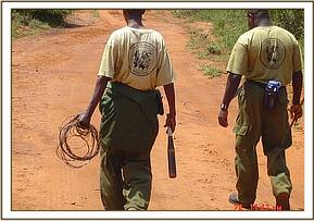 Two desnaring team members with lifted snares