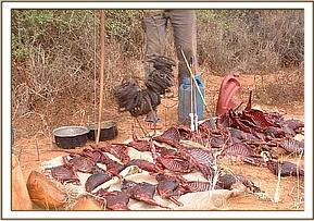 Dikdik meat and snares from slaughtering den