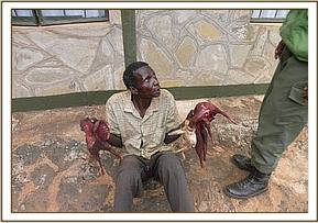 An arrested poacher with bushmeat
