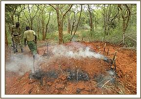 Illegal charcoal kilns in the park