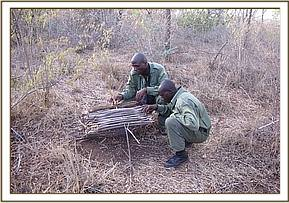 A Guinea Fowl trap at Usalama area