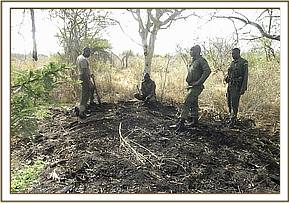 Illegal charcoal burning in the park area