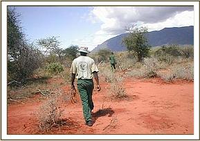 patrol along a poachers route at Ndii
