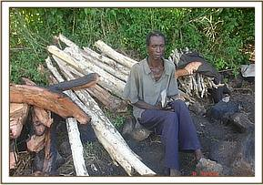 Arrested logger with his logged wood at Wayani