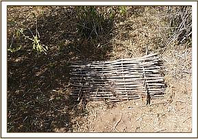 Bird trap discovered & destroyed at triangle area