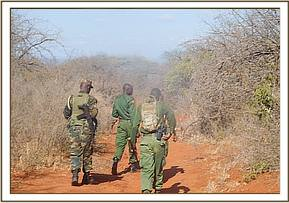 Team on patrol at Mbulia