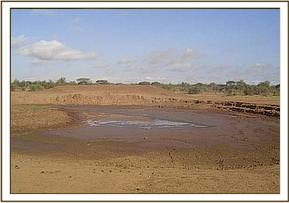 A receeding water dam at lumo wildlife santuary