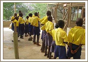 Kisou primary at the ithumba dog unit