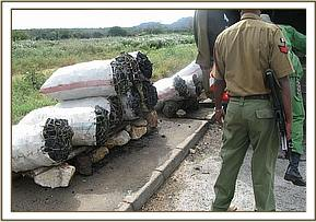 Charcoal impounded at Manyanga town
