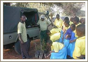 Seedling distribution to schools