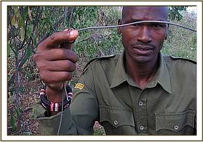 A ranger displaying a snare