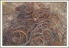 Pile of snares found and collected by the team