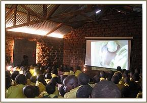 Students watch the wildlife films
