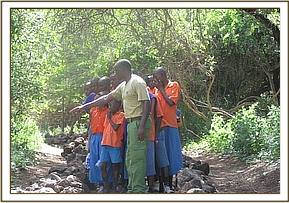 Iviani pupils at Mzima springs