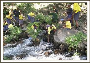 Kikwasuni pupils at mzima springs