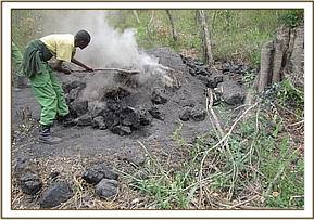 Destroying illegal charcoal kilns