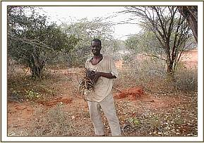 An arrested poacher with some of his snares