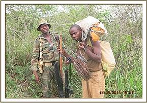 Poacher being escorted to desnaring car