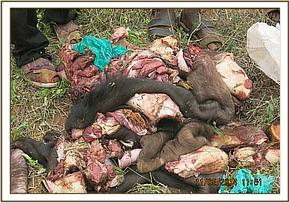 Poachers caught with a buffalo meat