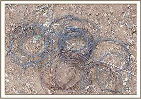 Snares recovered during patrol