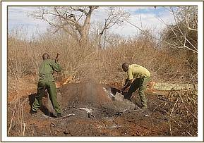 Destroying charcoal kilns at wayani area
