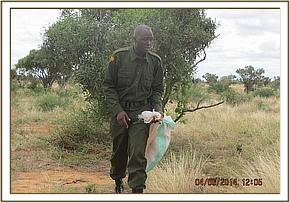 Ensuring a litter-free Park, Satao