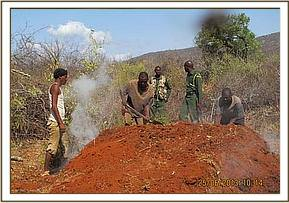Destroying the charcoal kiln, mbulia