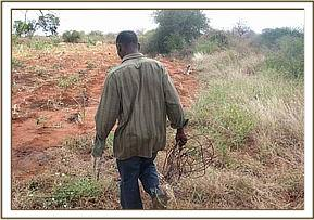 Arrested poacher with his snares