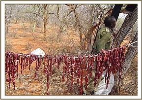 Bushmeat hung on a line to dry for market