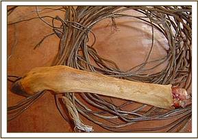 Snares and Impala leg confiscated from a poacher