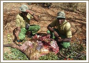 Bush meat recovered