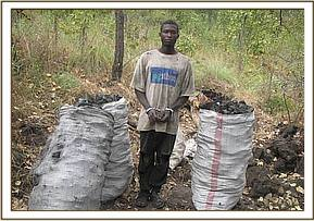 An arrested charcoal burner