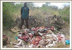 Bush meat poachers arrest at Kari area