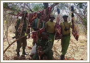 Second group of poachers arrested