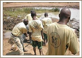 The team working together to free the Elephant
