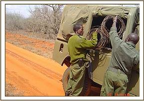 Collected snares being put in the vehicle