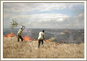 fire fighting at Ndara area