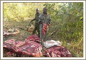 Arrested bushmeat poacher