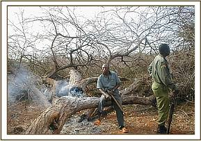 destruction of vegetation in Mbulia