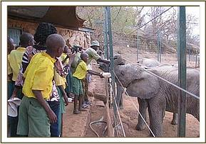 Tsavo pupils receive lecture about the orphans