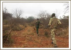 KWS Dog Unit&Trust antipoaching team hot on trail