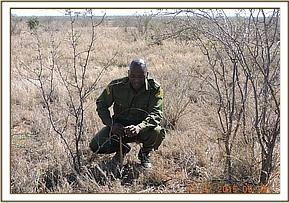 Collecting snares in Irima area