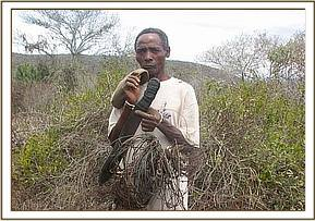 Arrested poacher and his snares