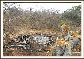 A destroyed charcoal kiln in the Triangle area