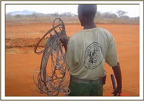 All types of snares lifted by the desnaring team